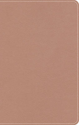 CSB Personal-Size On-The-Go Bible--soft leather-look, rose gold